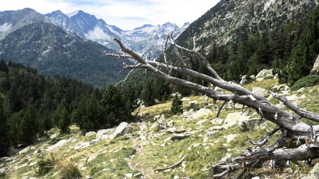 Nach überschreiten des Port de Rius folgt ein Abstieg ins Vall de Mulleres.